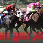 Animal rights activists renew Santa Anita Park horseracing protests