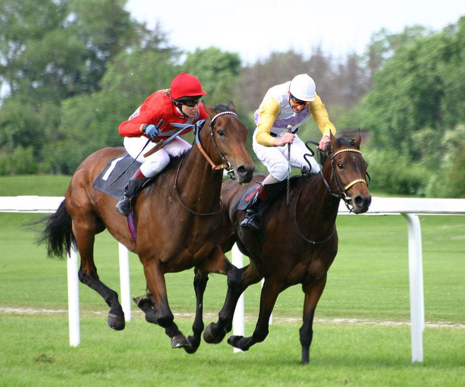 New Zealand closes betting shops, cancels horse racing