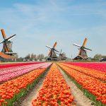 The Netherlands Issues Subordinate Gambling Regulations