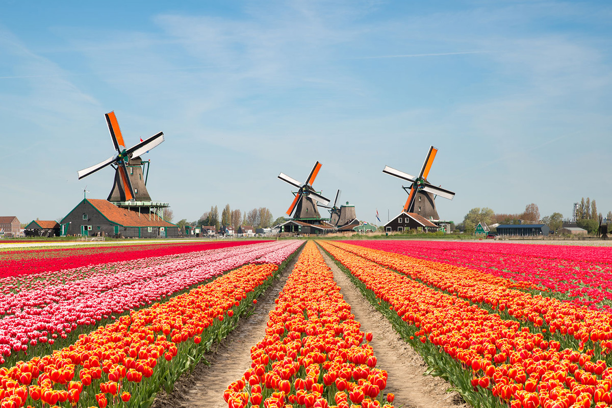 The Netherlands Issues Subordinate Gambling Regulations