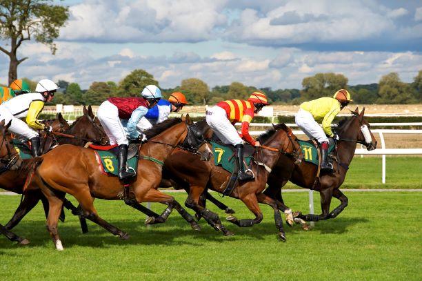 Irish horse racing halted until April 19