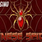 Chinese Spider Slot Review (Amatic)
