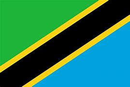 Tanzania to go online to monitor slots