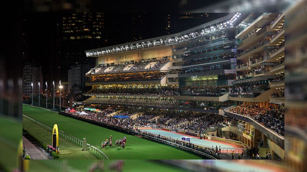 Hong Kong races to record turnover