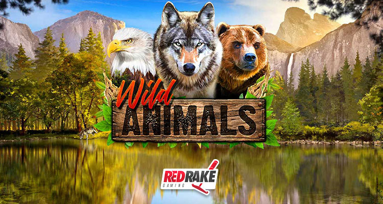 Become part of the pack in Red Rake Gaming's new Wild Animals online slot game