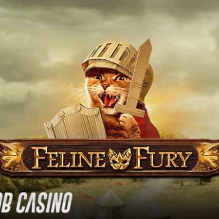 Feline Fury Slot Review (Play'n Go)