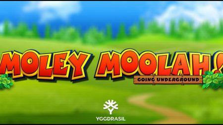 Yggdrasil Gaming Limited premieres new Moley Moolah video slot