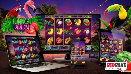 Red Rake Gaming releases Flamingo Paradise, a slot game full of fun