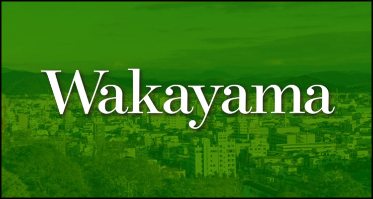 Wakayama Prefecture loses integrated casino resort operator candidate