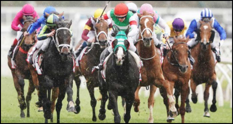 Racing Victoria unveils upcoming horseracing prize money boost